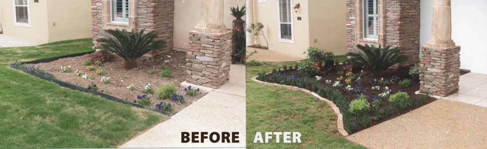 Access here lot info landscaping san antonio for San antonio landscaping ideas
